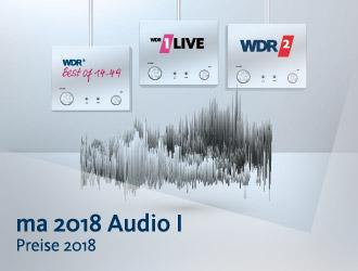 Media-Analyse 2018 Audio I Bildmotiv
